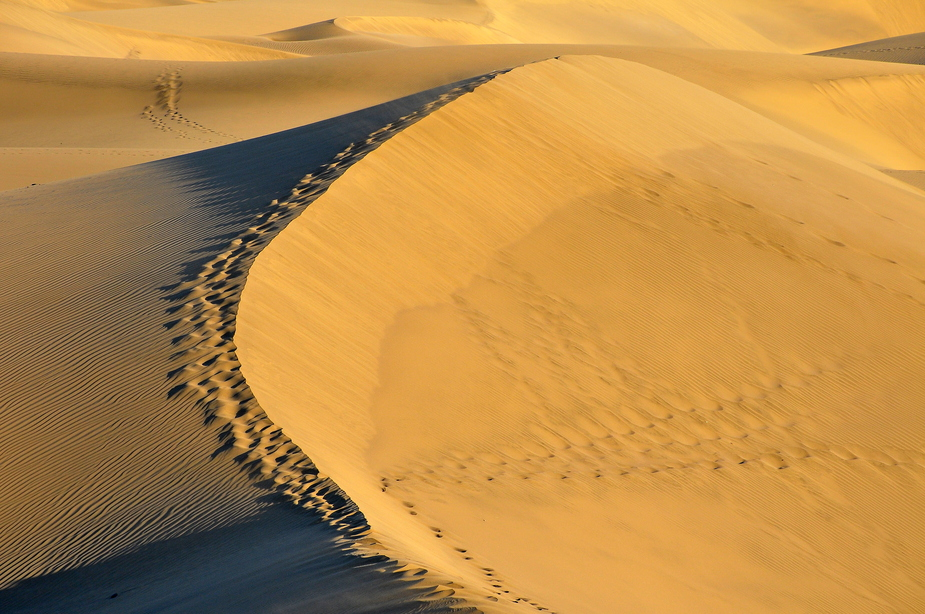 The Dune I
