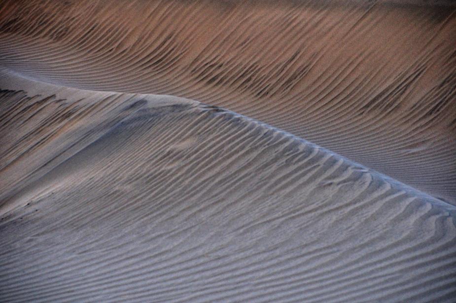 The Dune III