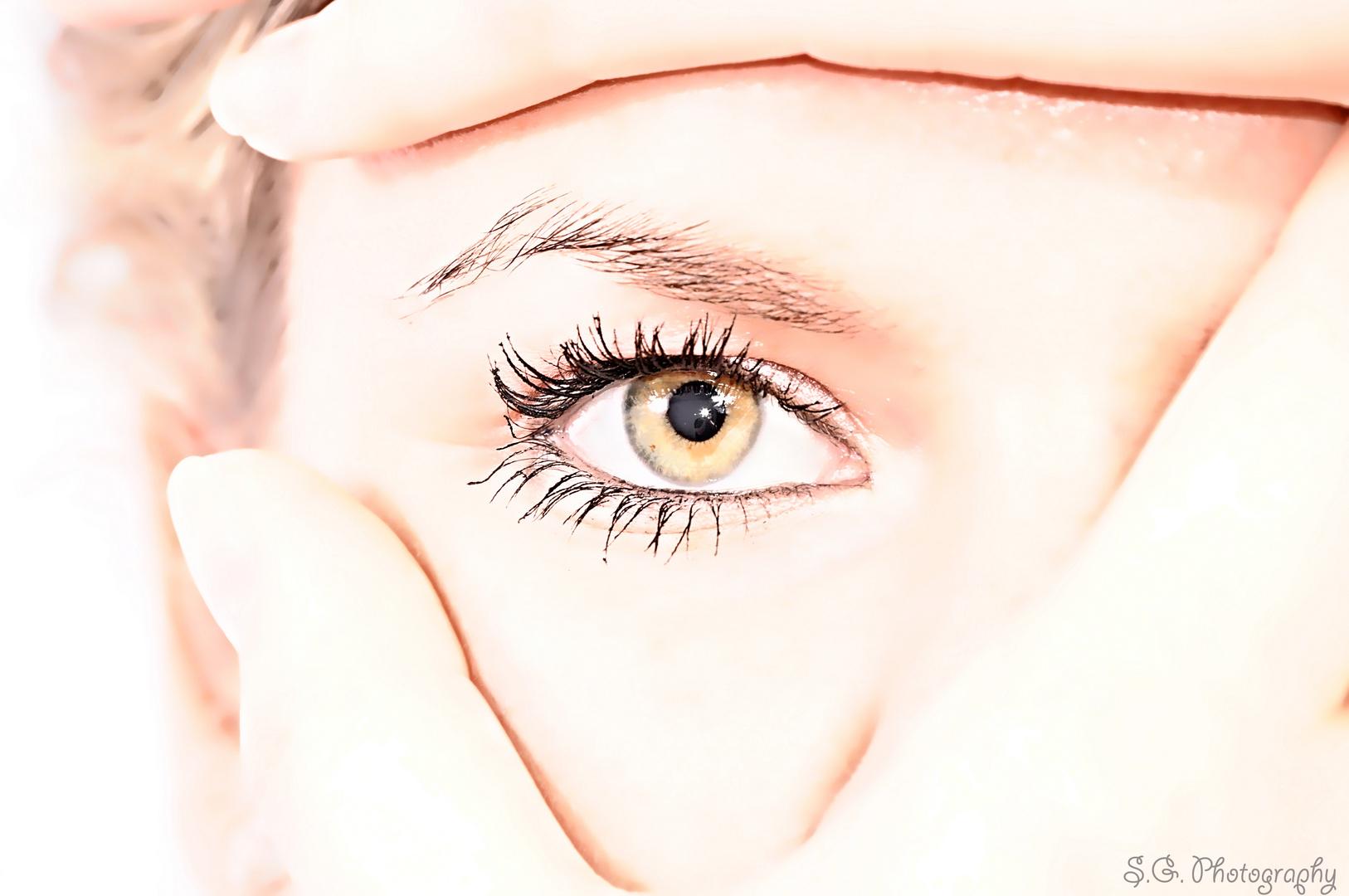 The eye II
