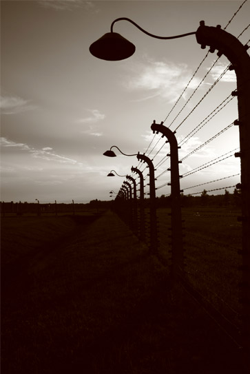 The Fence in Auschwitz Birkenau