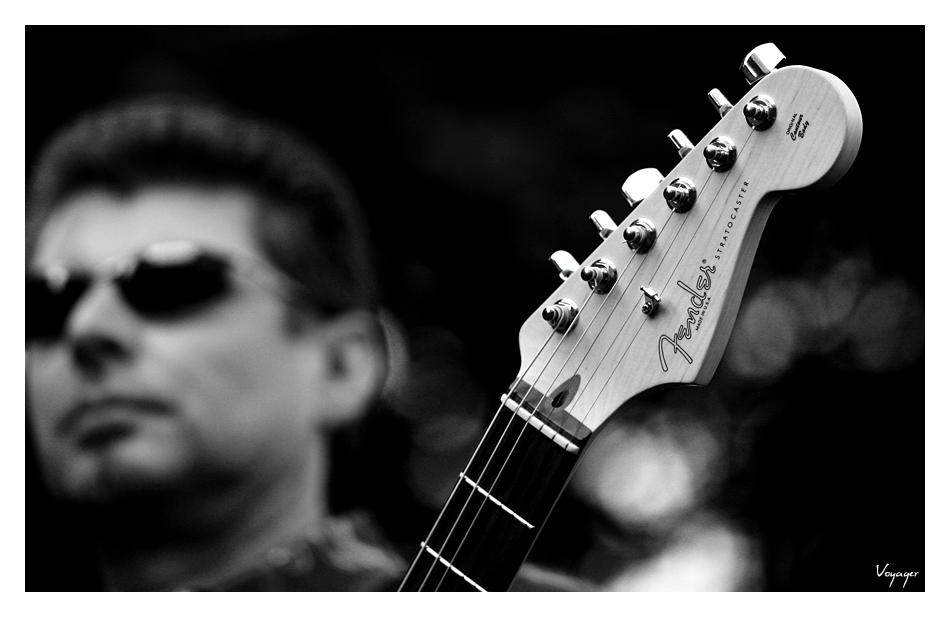 The Fender