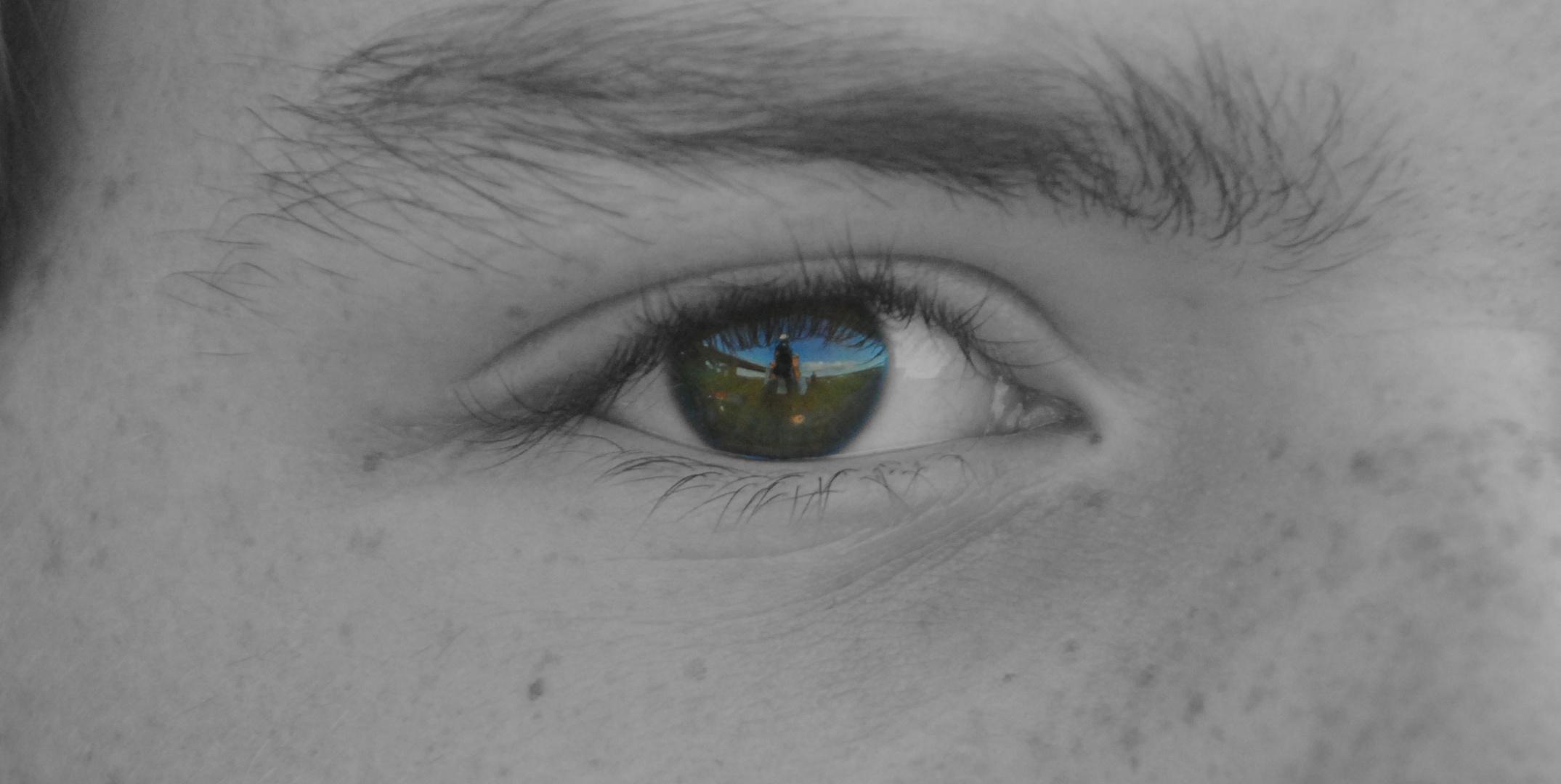 "The ""Fish""eye"