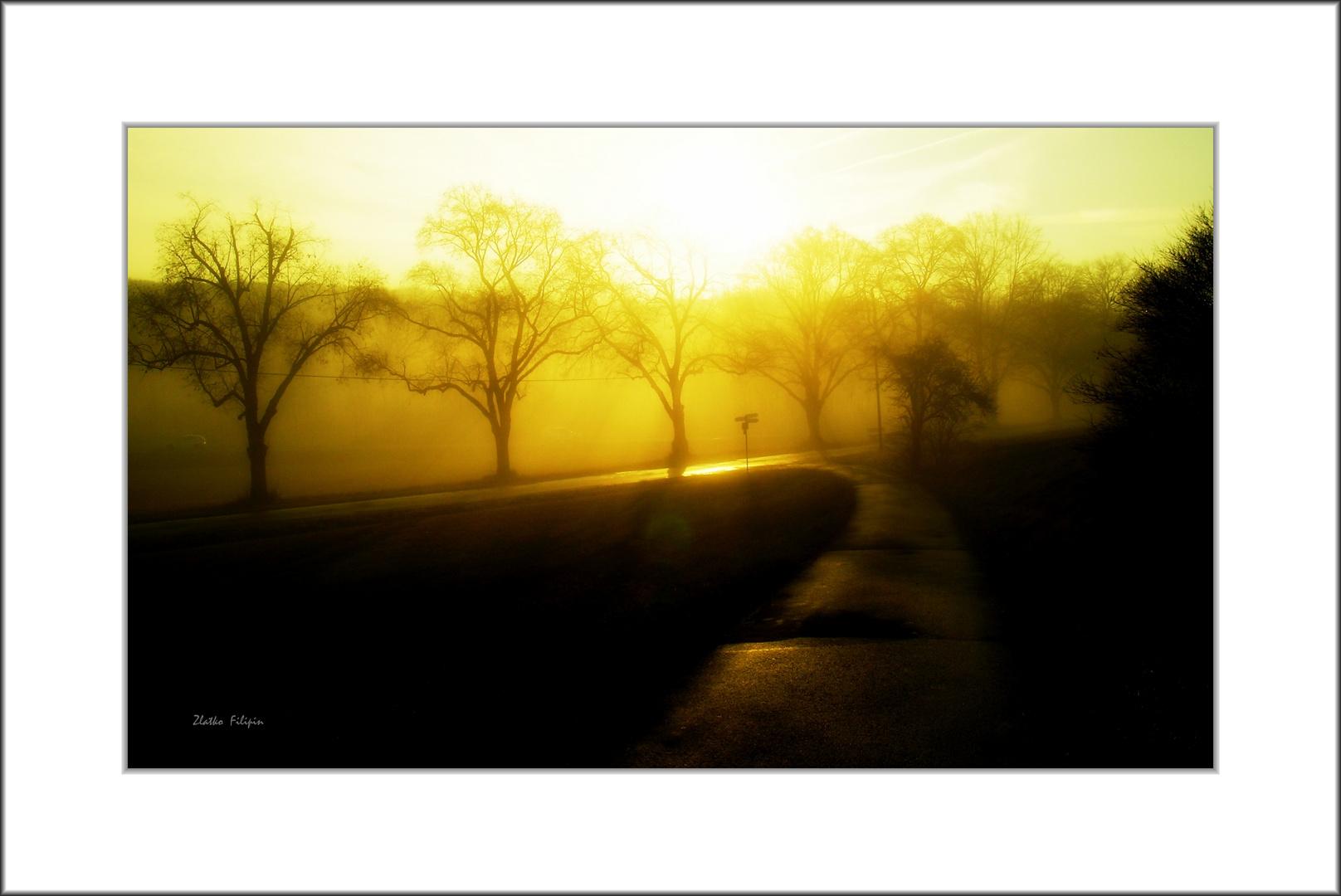 *** The Fog-1 ***