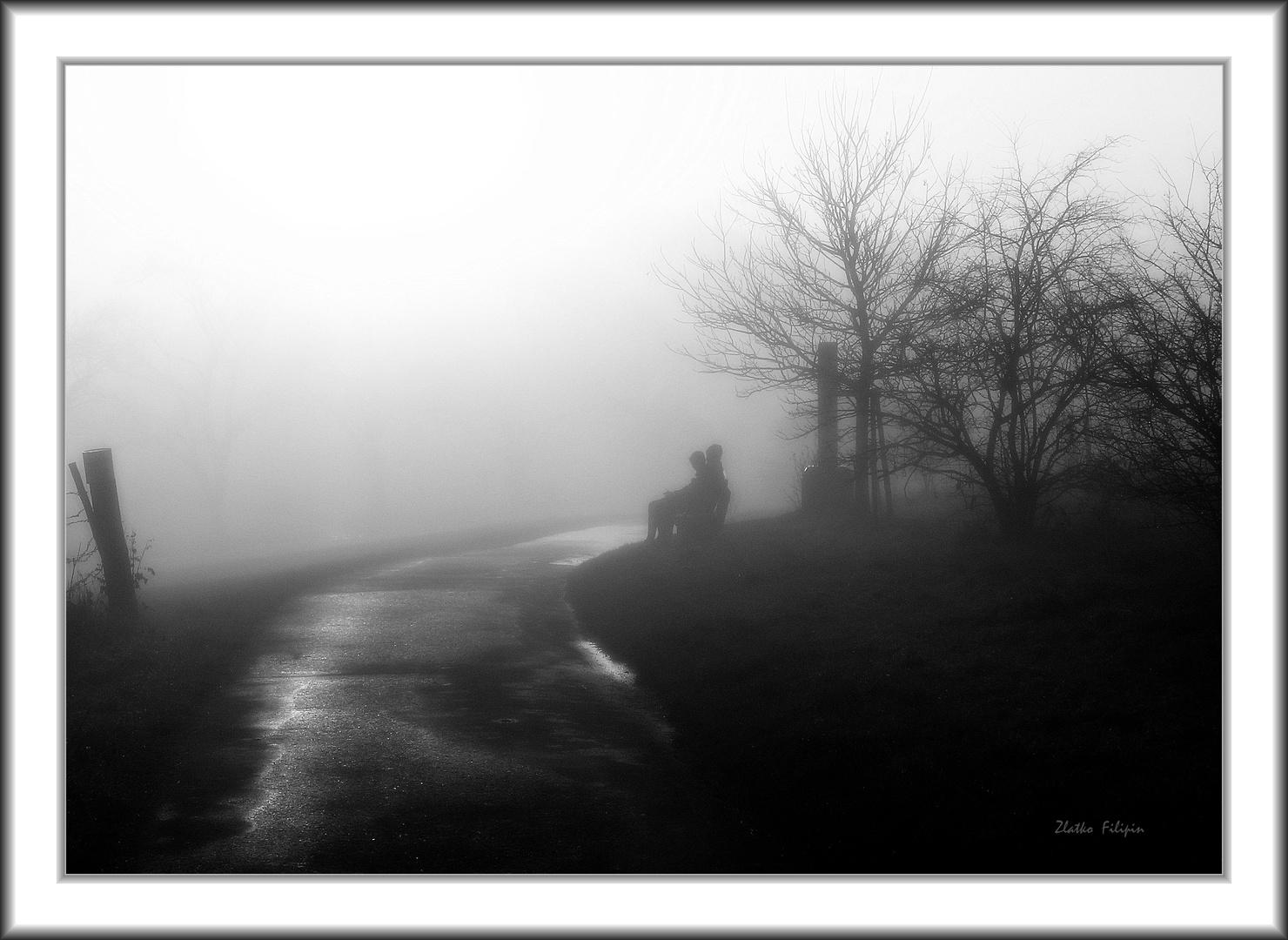 *** The Fog - 17 ***