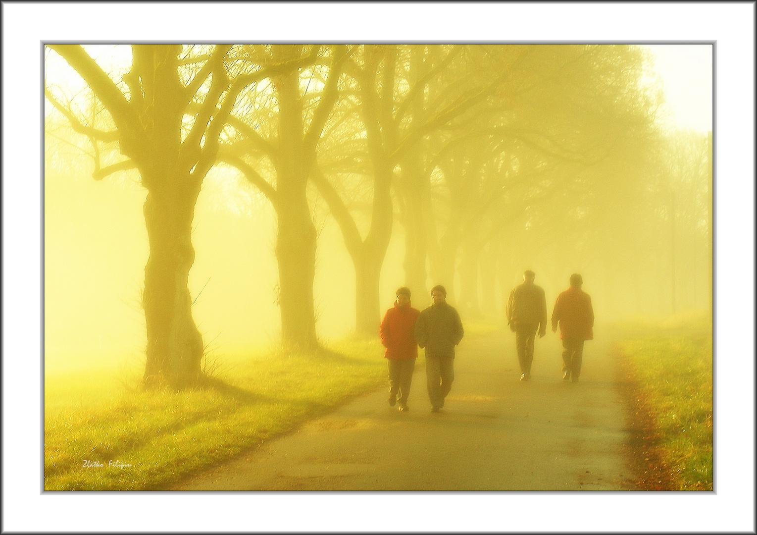 *** The Fog - 9 ***
