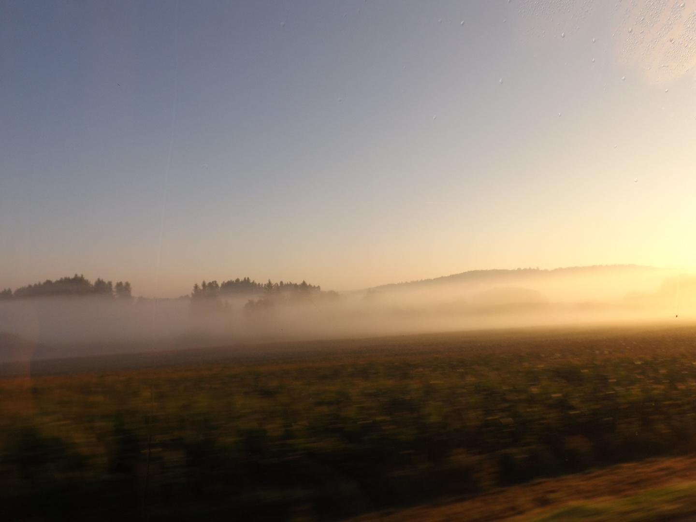 The Foggie Field in Tschechien