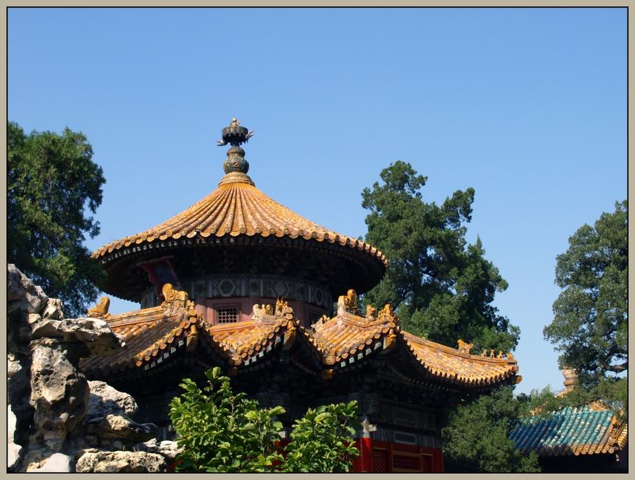 the forbidden city XV