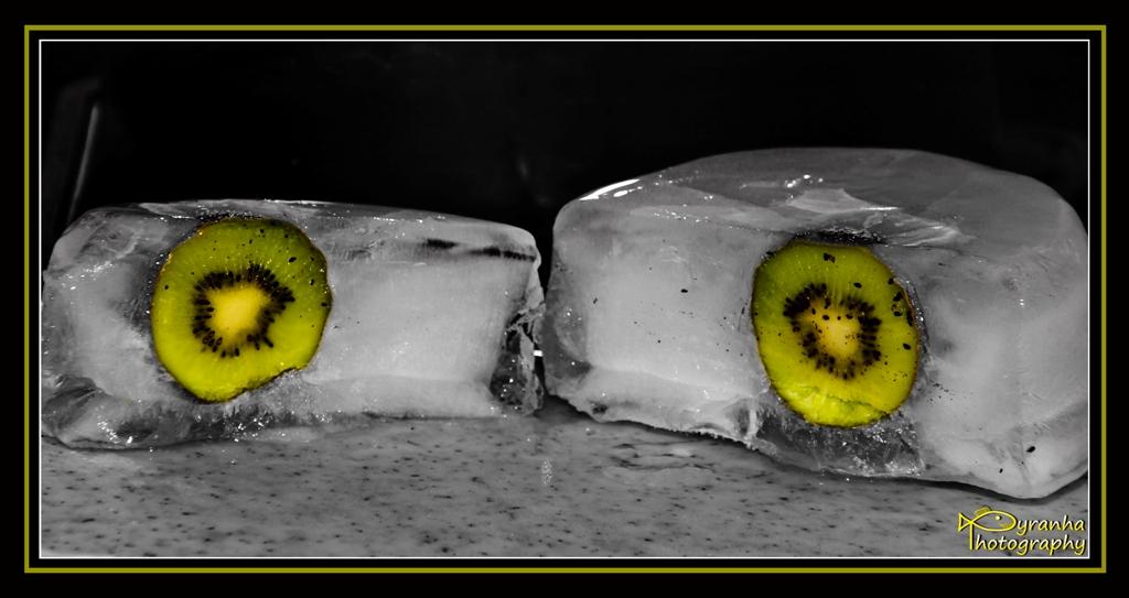 The Frozen Kiwi