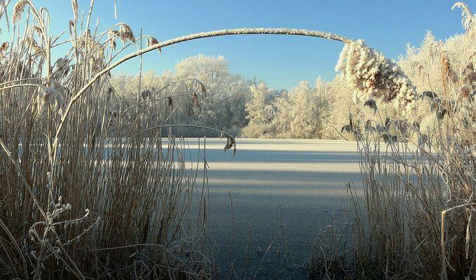 The Frozen World (4)
