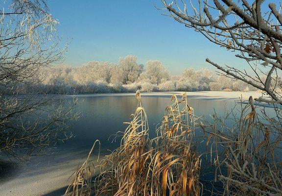 The Frozen World (8)