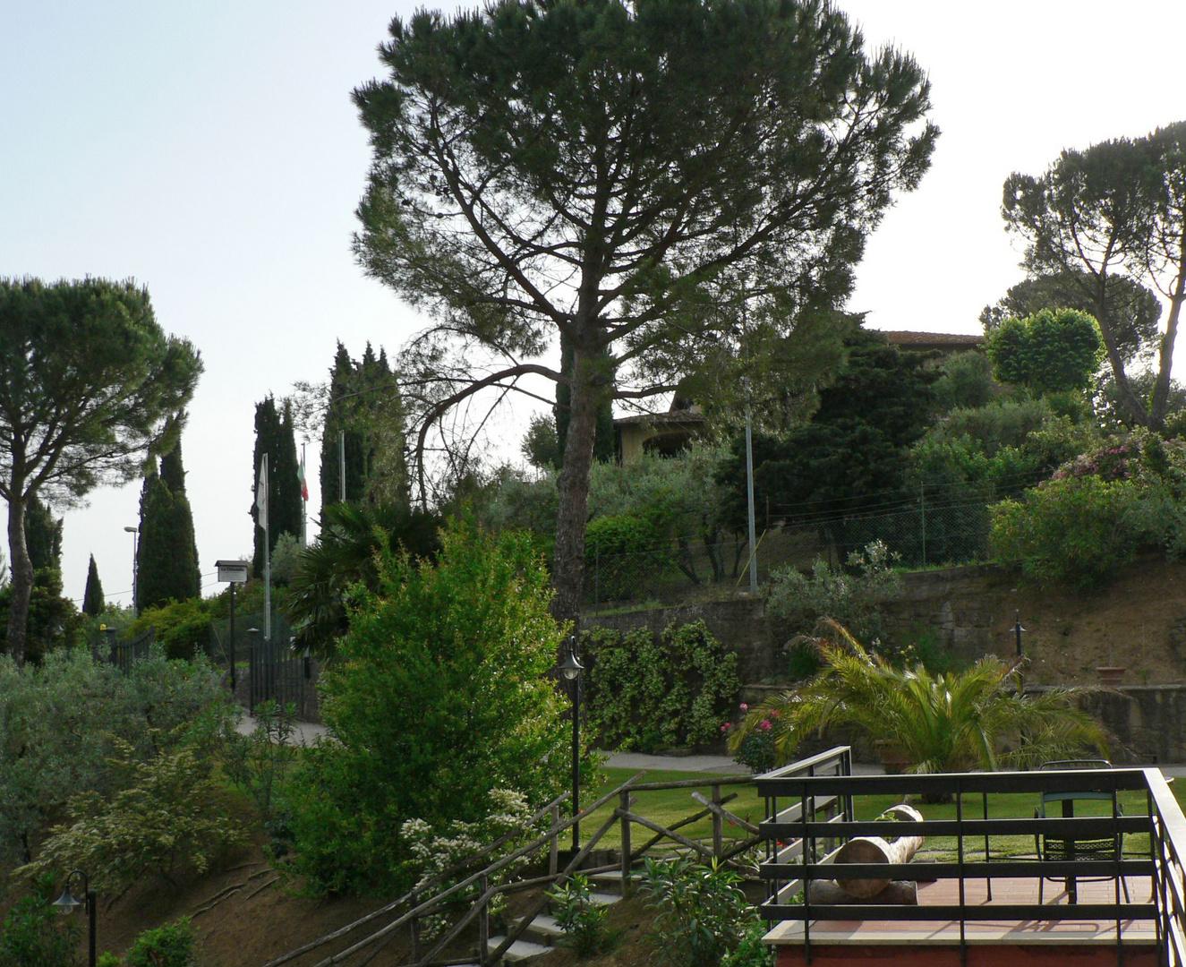 The Garden of La Cittadella