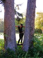 the girl between 2 trees