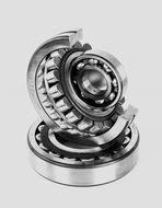 The globe of bearings...
