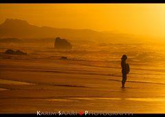 The Golden Surfer