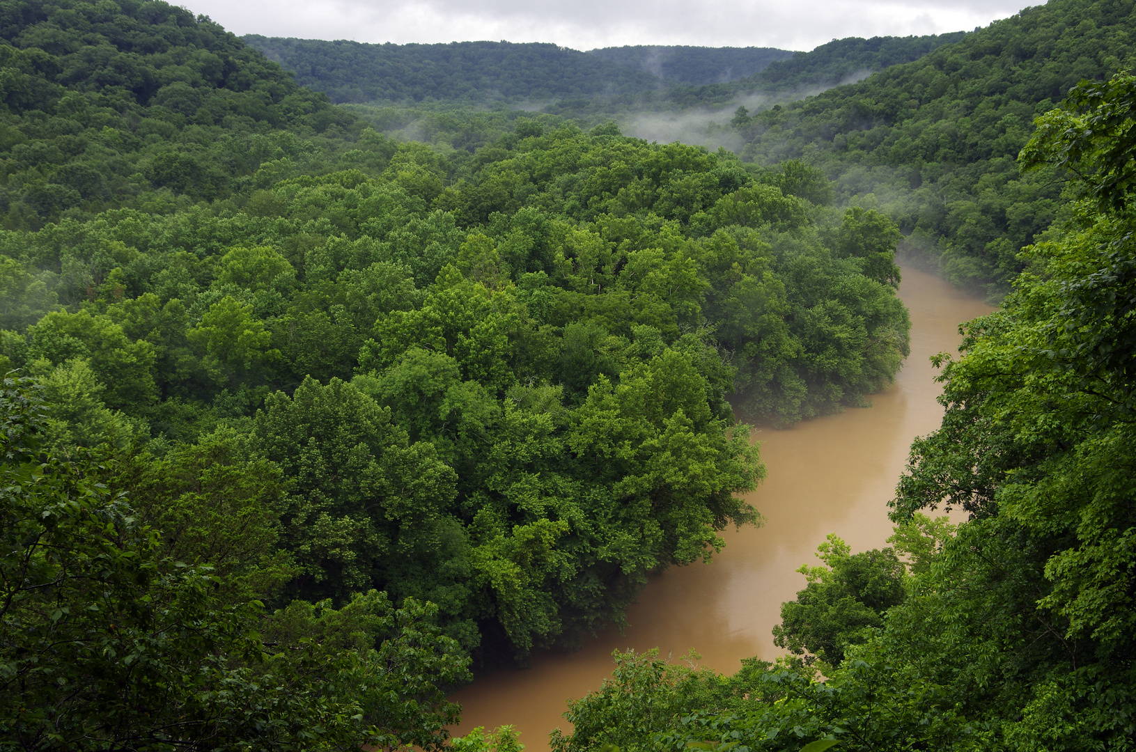 The Green River (in Mammoth Cave N.P., Kentucky)