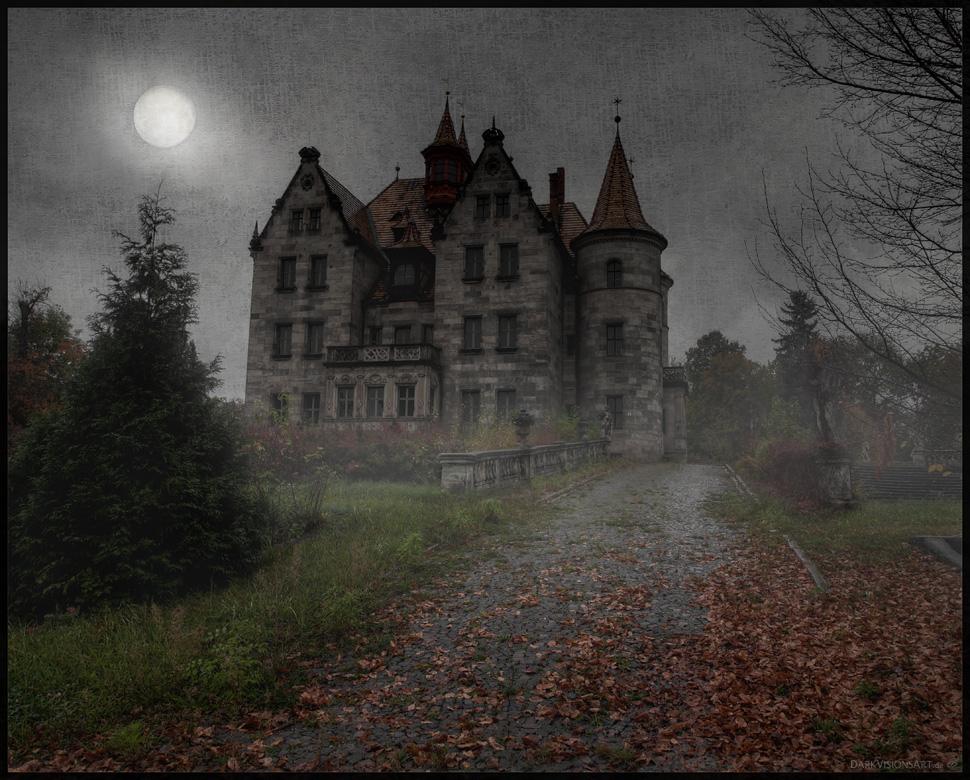 The House IX