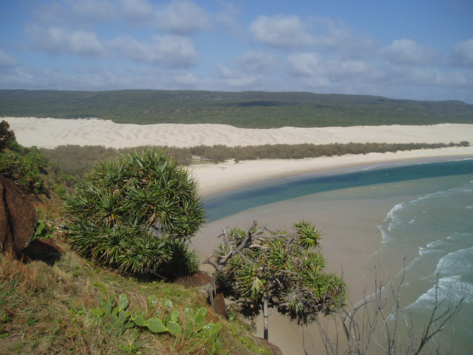 The Infamous Fraser Island