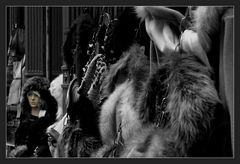 the lady and the furs