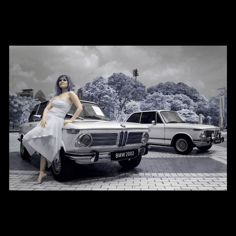 :: The Lady and The Old Cars ::