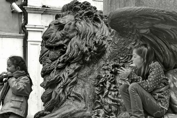 The Lion in Venice