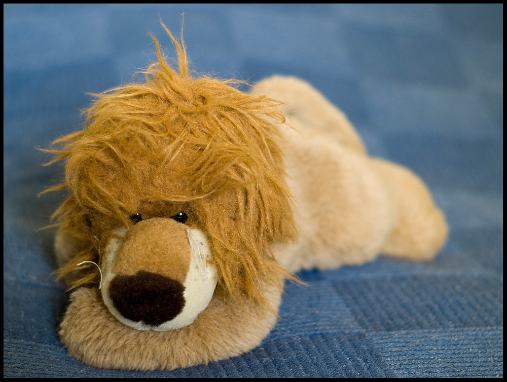***The Lion King***