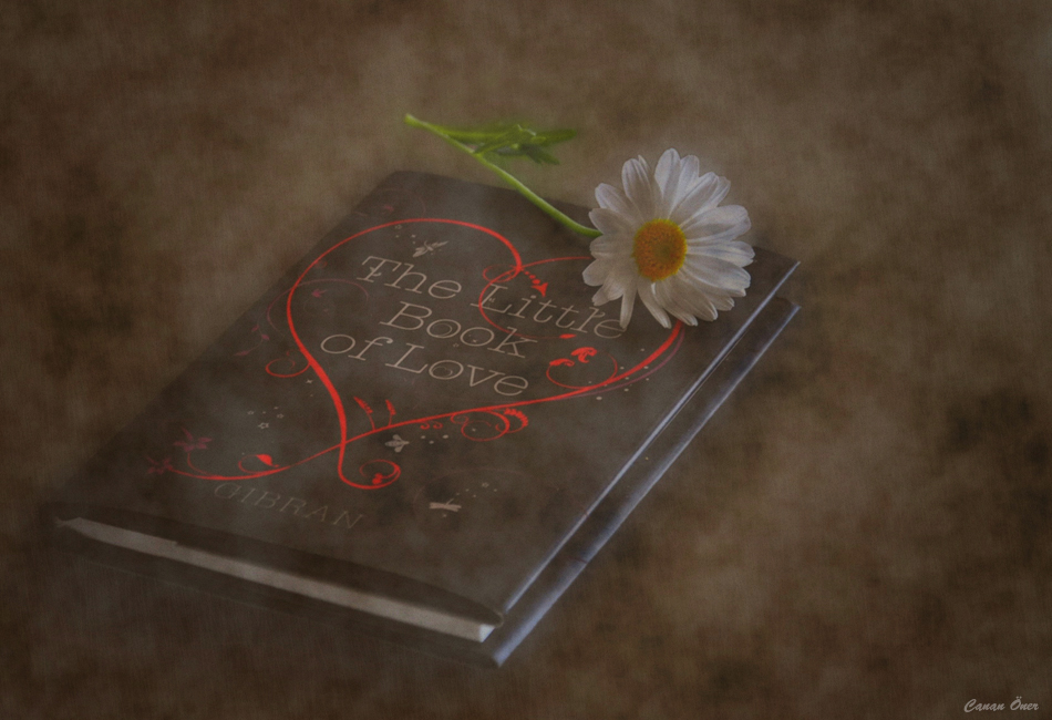 The Little Book of LOVE....