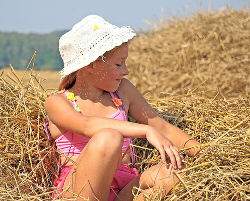 The little sunt summer