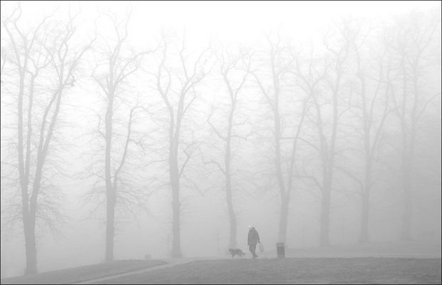 the London fog: Man and his Dog