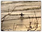 The lonely Surfer
