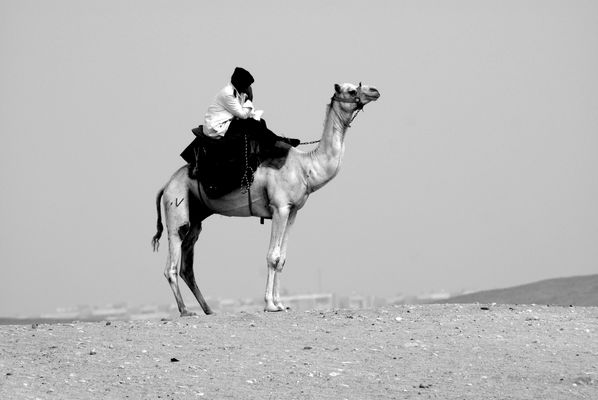The lonesome rider