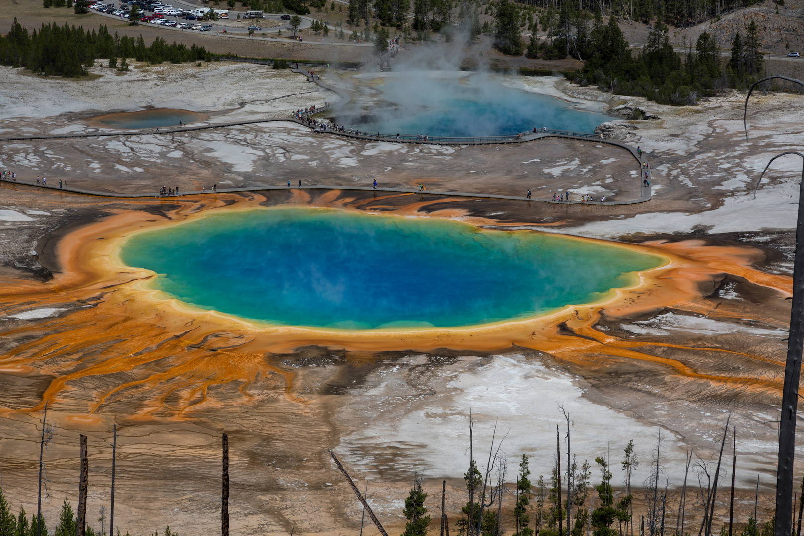 The Magic Colors of Yellowstone IV