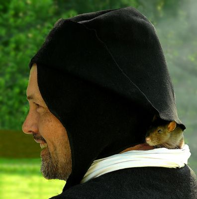 The Middle Ages (48) : Walking the rat…..