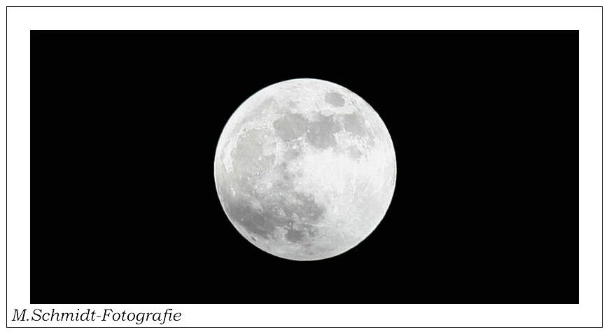 The Mond