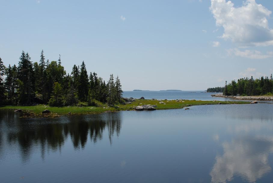 The nature of Nova Scotia -1-