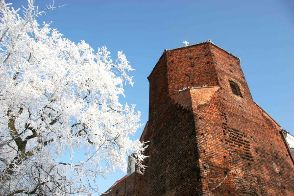 The Nobleman's Tower in Plock/ Poland /