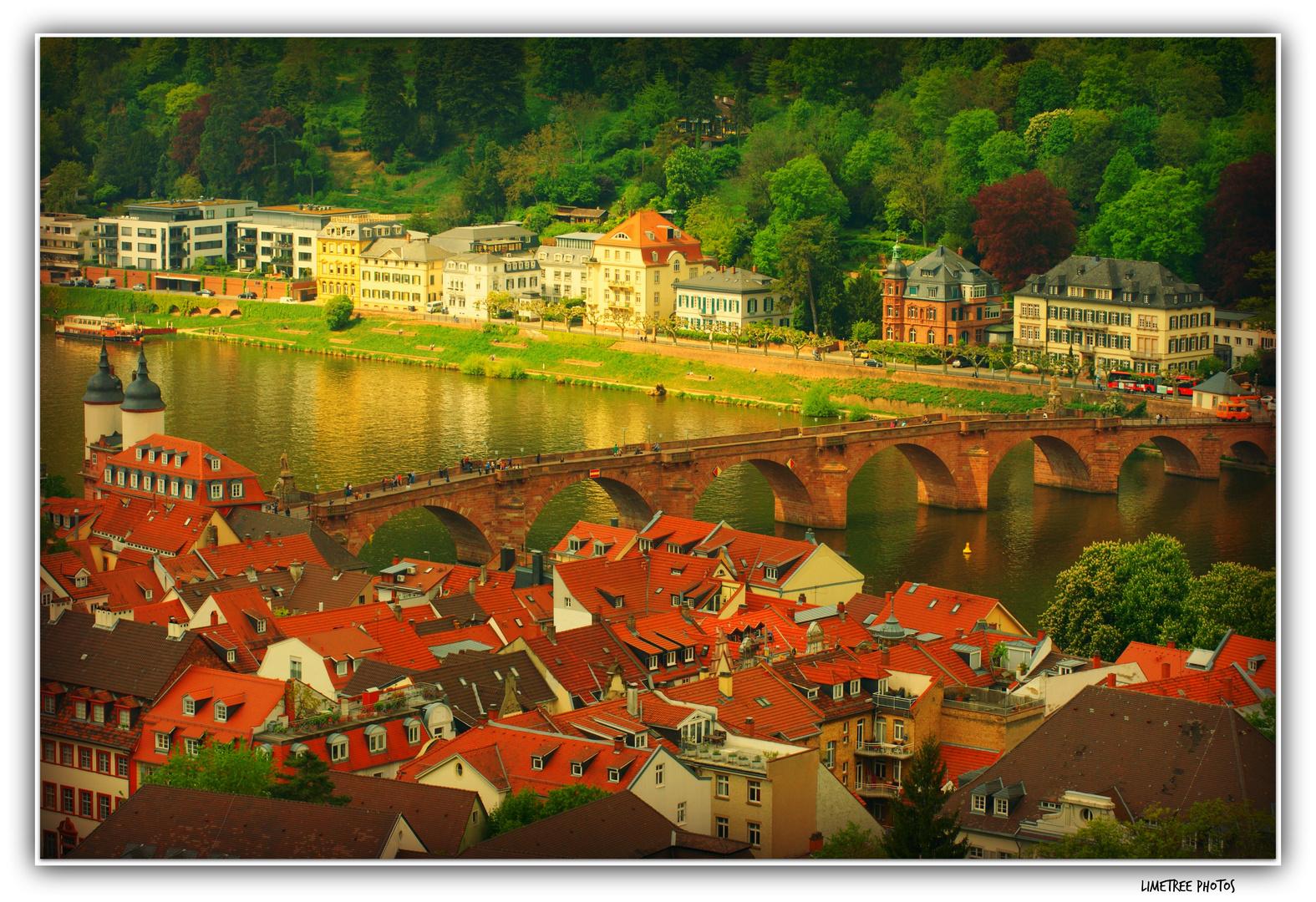 The Old Bridge of Heidelberg