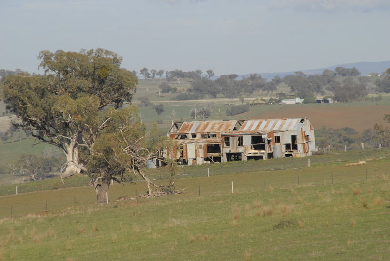 The Old Shearing Shed