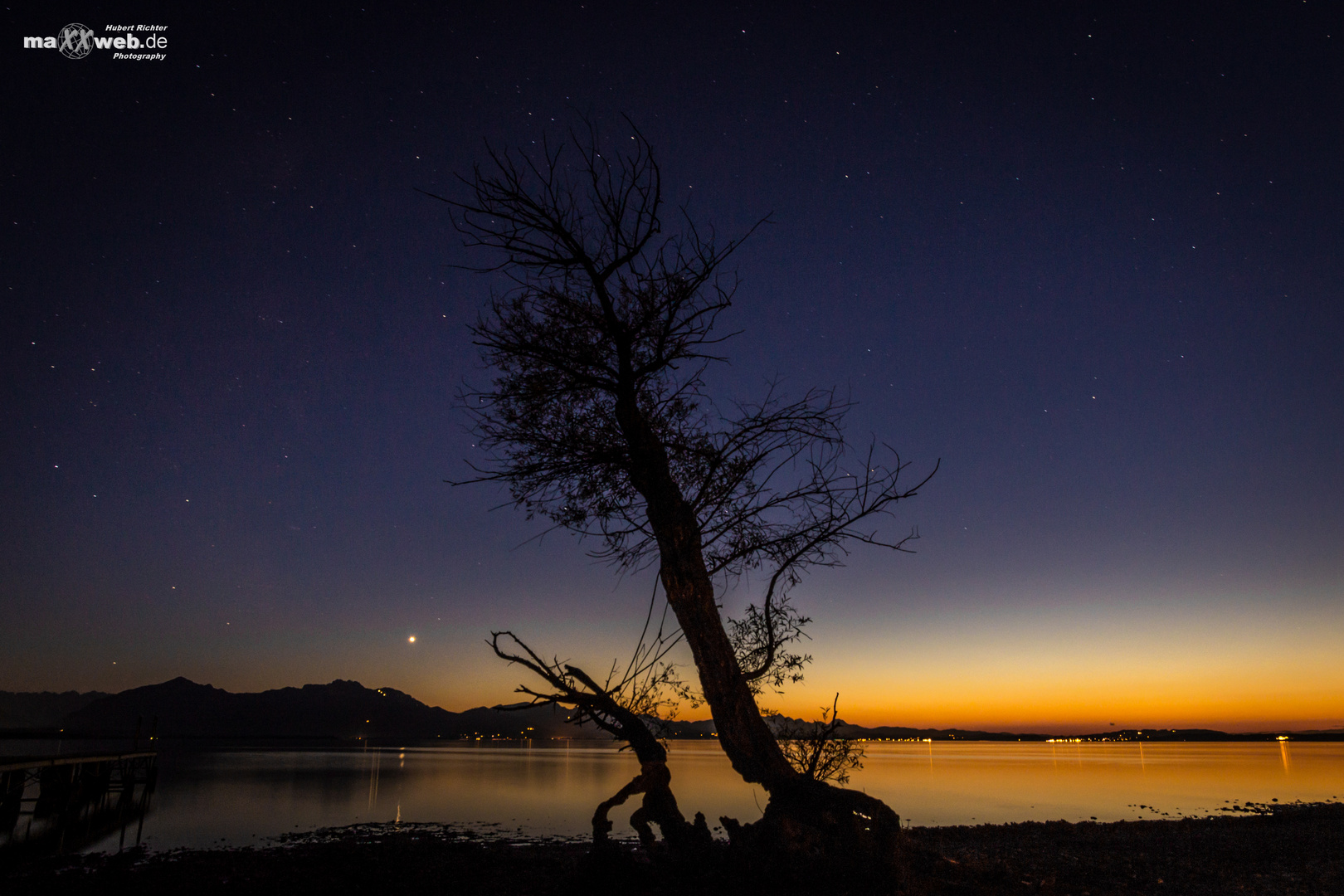 The old Tree and the Lake