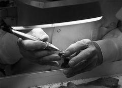 The Paleontologist's Hands