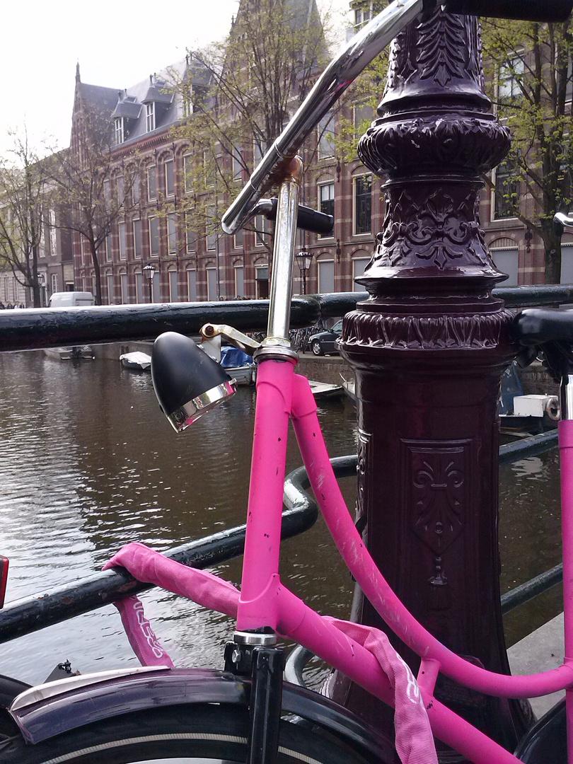 The Pink Bike