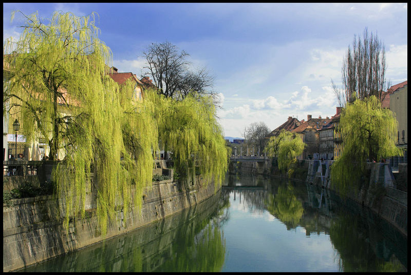 The River in town Ljubljana