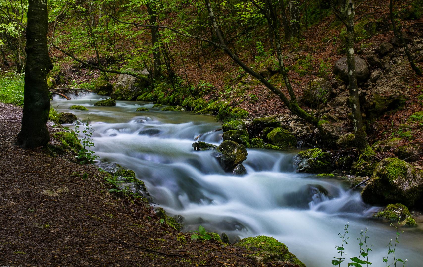 The River is flowing - Der Fluss geht auf die Reise
