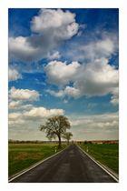 The Road to Michelfeld