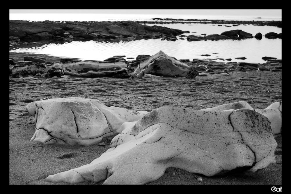 The rocky seaside