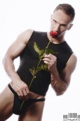 ... the rose ...