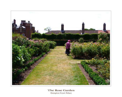 THE ROSE GARDEN - Vom Duft der Rosenblüte