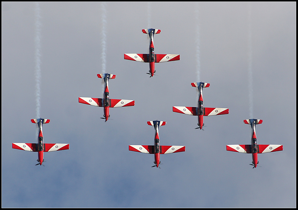 """""""The Roulettes"""""""