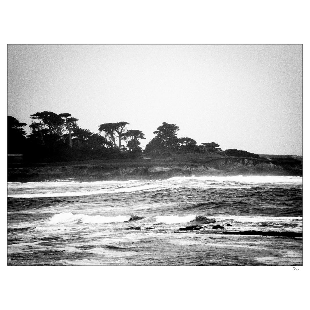 ~ The Sea ~