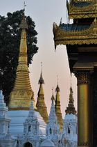 The Shwedagon at sunset