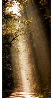 the sound of light...-